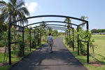 City Of Marco Island - Mackle Park - Northern Entrance Arbor