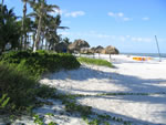 Naples Beach Hotel - Beachfront With Chickee Huts